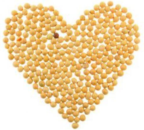 proteinele-de-soia.-jpeg.jpg