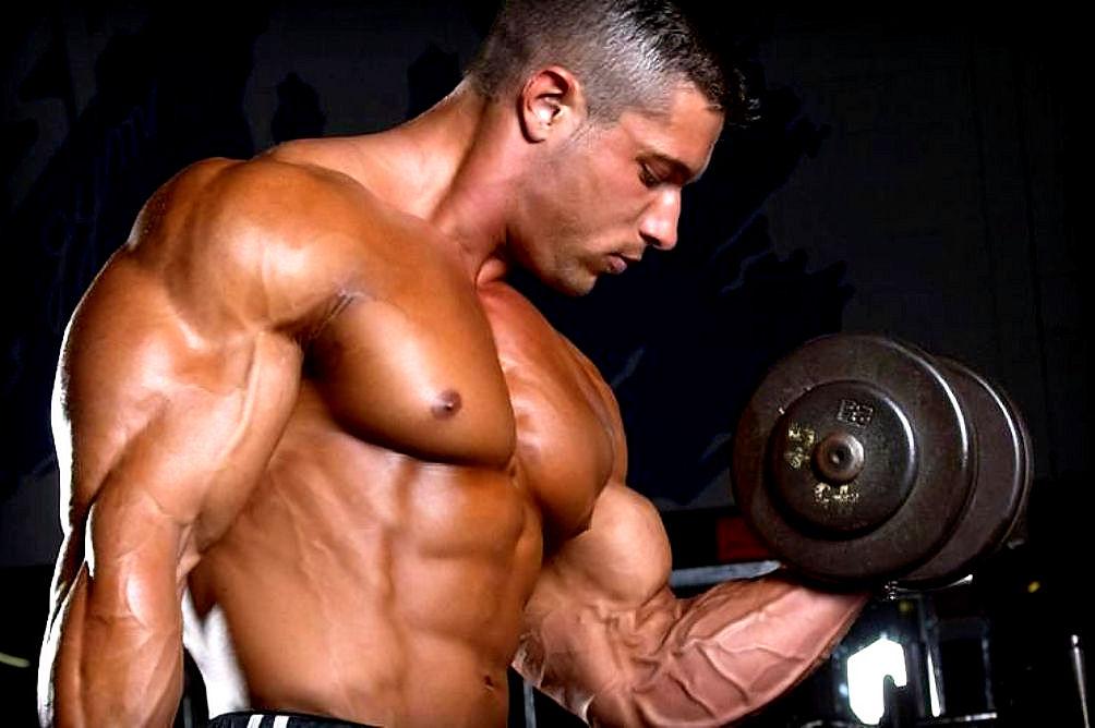 Bodybuilding-Exercises.jpg
